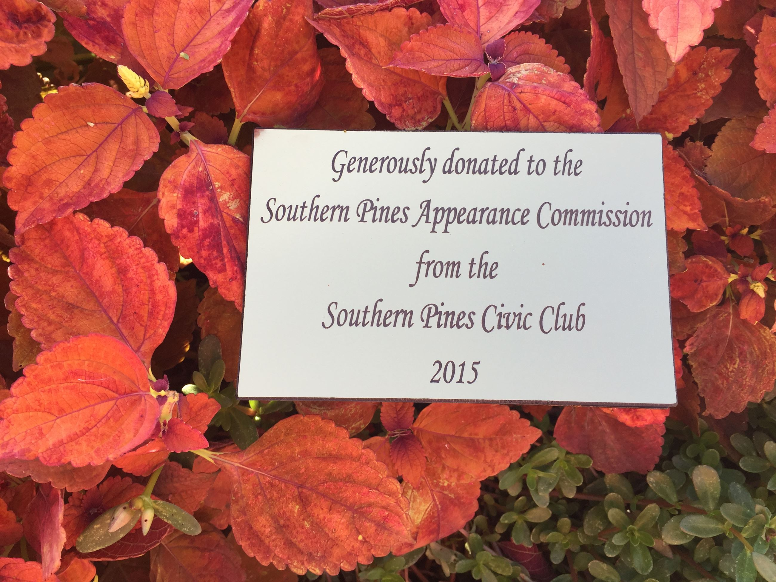 Southern Pines Civic Club Donation