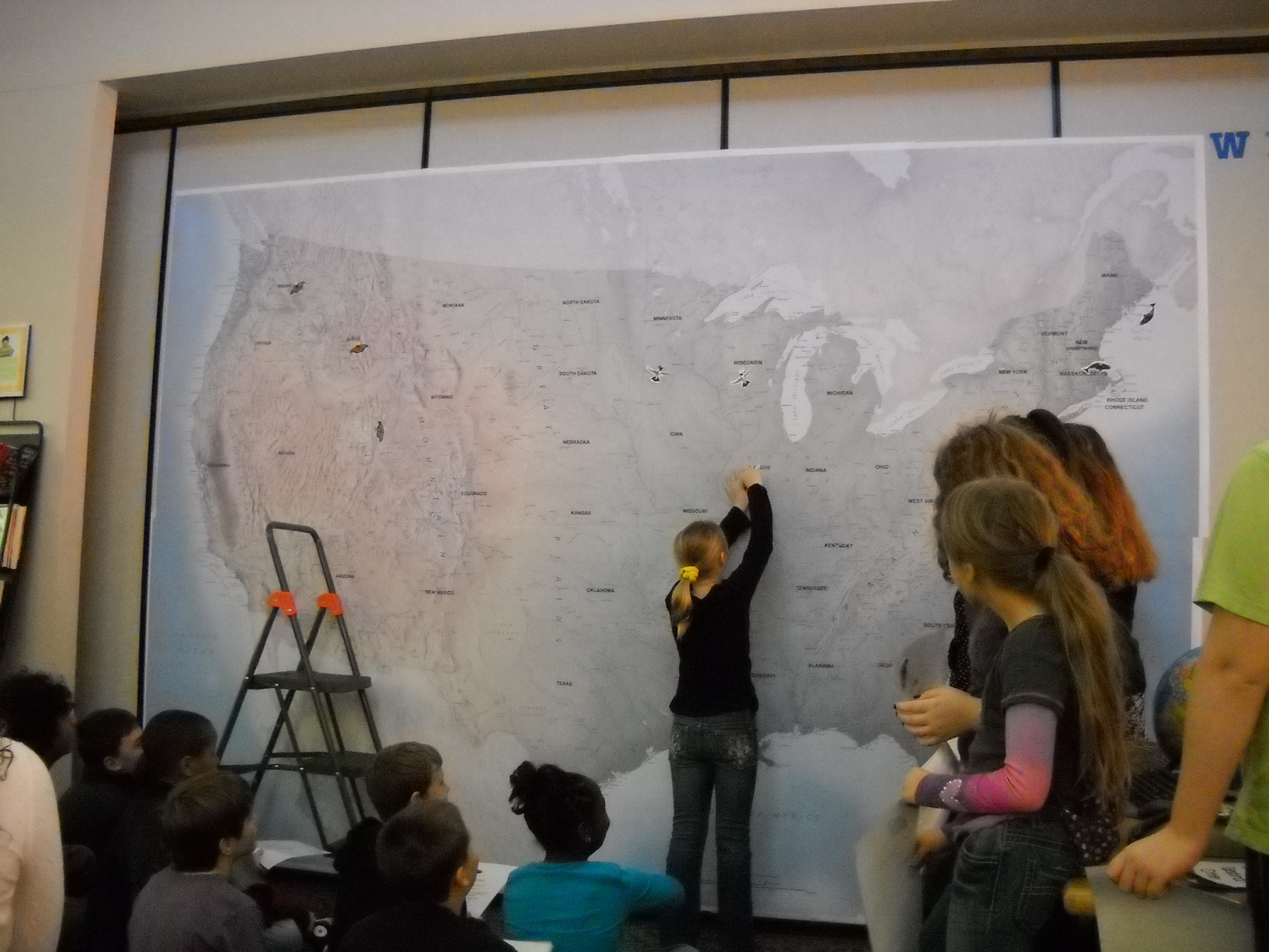 Students mapping whale migration on a wall size map.